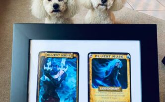 Gift bluest muse warrior mage frame with dogs